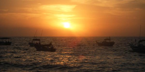 davis_sunset600